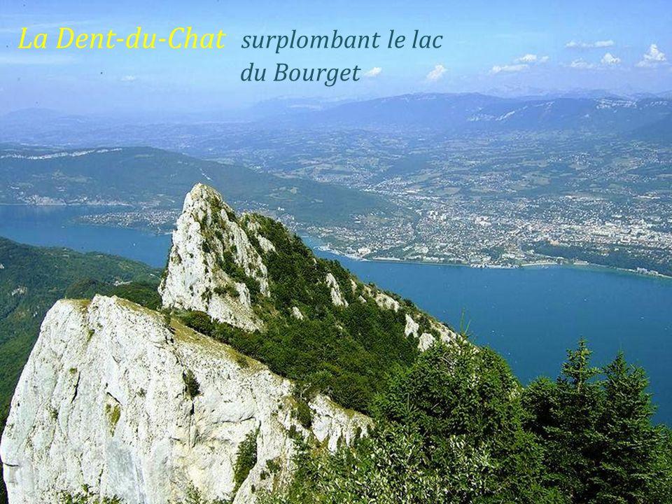La Dent-du-Chat surplombant le lac. du Bourget