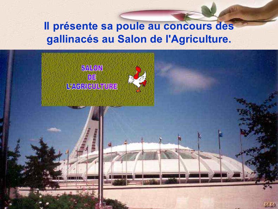 Il présente sa poule au concours des gallinacés au Salon de l Agriculture.