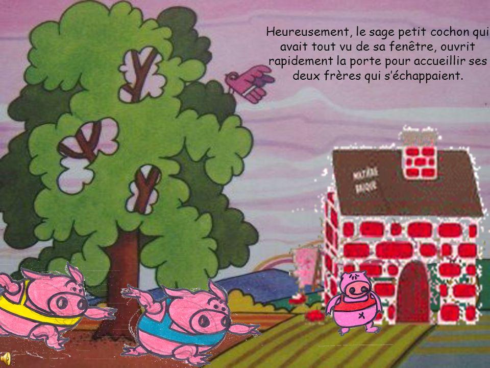 Les deux petits cochons tremblaient comme des feuilles! Alors le loup gonfla sa poitrine la maisonnette en bois sécroula comme un château de cartes.