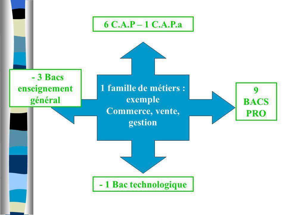 1 famille de métiers : exemple Commerce, vente, gestion 6 C.A.P – 1 C.A.P.a - 1 Bac technologique 9 BACS PRO - 3 Bacs enseignement général