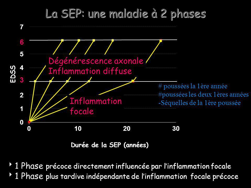 La SEP: une maladie à 2 phases 3 6 0 1 2 4 5 7 0102030 Durée de la SEP (années) EDSS 1 Phase précoce directement influencée par linflammation focale 1 Phase plus tardive indépendante de linflammation focale précoce Inflammation focale Dégénérescence axonale Inflammation diffuse # poussées la 1ère année #poussées les deux 1ères années -Séquelles de la 1ère poussée