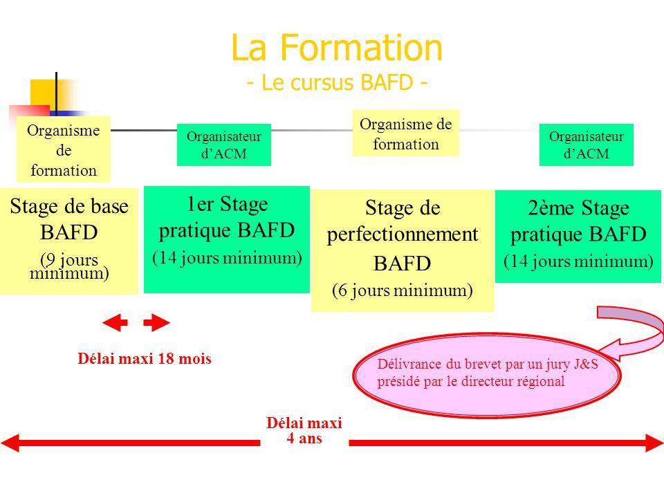 La Formation - Le cursus BAFD - Stage de base BAFD (9 jours minimum) Organisme de formation Stage de perfectionnement BAFD (6 jours minimum) Organisme