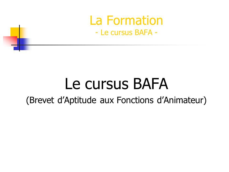 Le cursus BAFA (Brevet dAptitude aux Fonctions dAnimateur) La Formation - Le cursus BAFA -