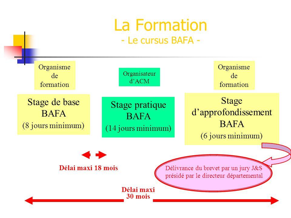 La Formation - Le cursus BAFA - Stage de base BAFA (8 jours minimum) Organisme de formation Stage dapprofondissement BAFA (6 jours minimum) Organisme de formation Stage pratique BAFA (14 jours minimum) Organisateur dACM Délai maxi 30 mois Délai maxi 18 mois Délivrance du brevet par un jury J&S présidé par le directeur départemental