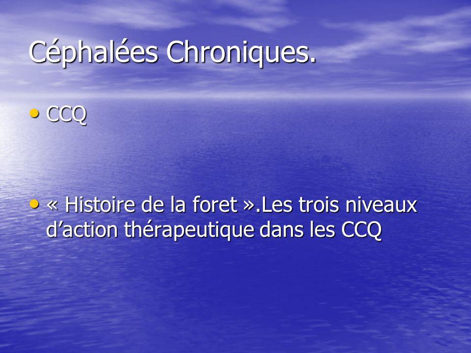 Céphalées Chroniques. CCQ CCQ « Histoire de la foret ».Les trois niveaux daction thérapeutique dans les CCQ « Histoire de la foret ».Les trois niveaux