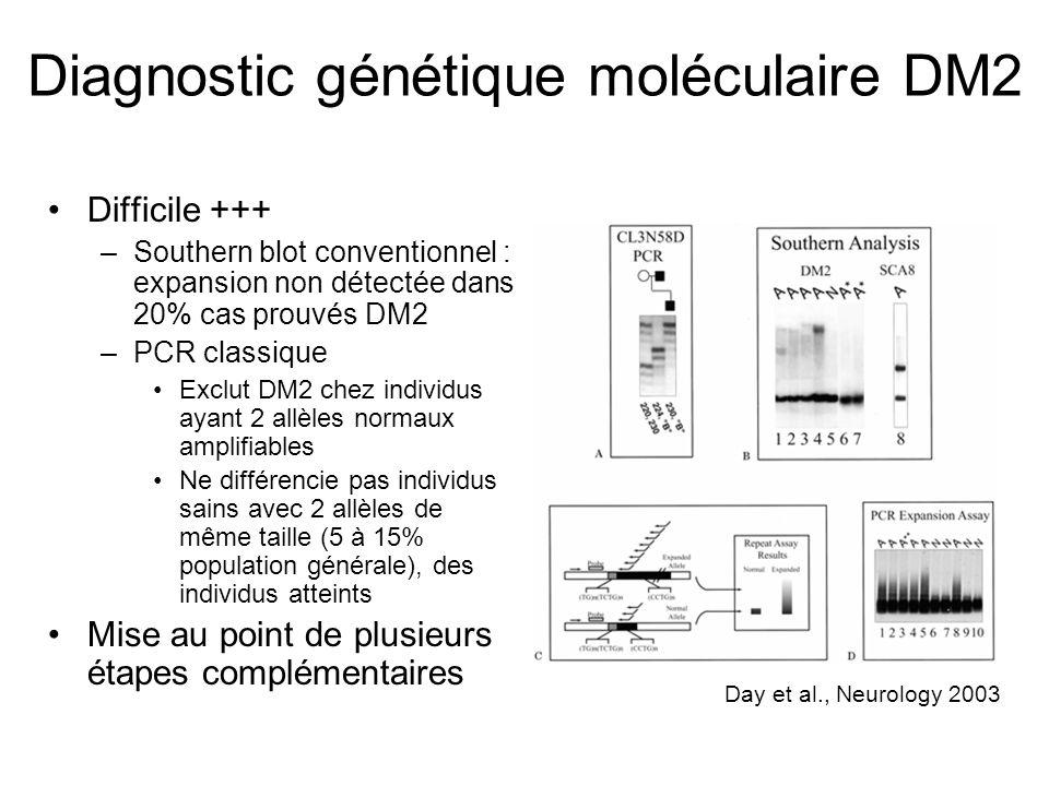 Diagnostic génétique moléculaire DM2 Difficile +++ –Southern blot conventionnel : expansion non détectée dans 20% cas prouvés DM2 –PCR classique Exclu