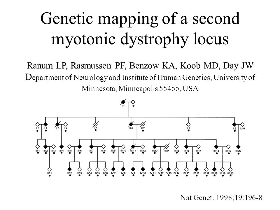 Myotonic dystrophy type 2 caused by a CCTG expansion in intron 1 of ZNF9 Liquori CL, Ricker K, Moseley ML, Jacobsen JF, Kress W, Naylor SL, Day JW, Ranum LP Institute of Human Genetics; MMC 206, 420 Delaware Street SE, University of Minnesota, Minneapolis, MN 55455, USA Science 2001;293:864-7
