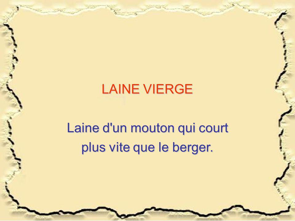 LAINE VIERGE Laine d'un mouton qui court plus vite que le berger.