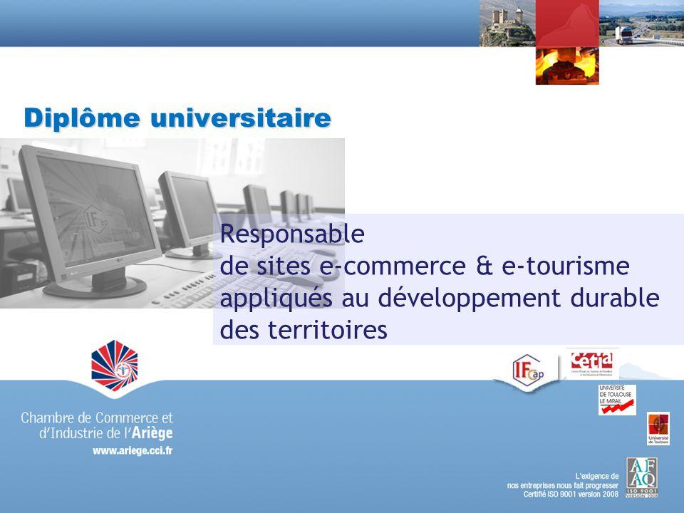 Diplôme universitaire Responsable de sites e-commerce & e-tourisme appliqués au développement durable des territoires