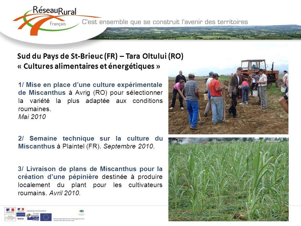 Sud du Pays de St-Brieuc (FR) – Tara Oltului (RO) « Cultures alimentaires et énergétiques » 1 2/ Semaine technique sur la culture du Miscanthus à Plaintel (FR).