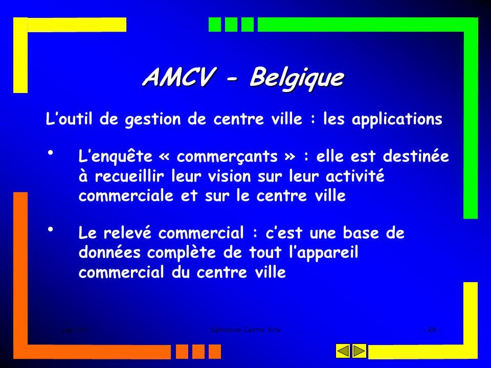 juin 2005Séminaire Centre Ville- 28 - AMCV - Belgique Loutil de gestion de centre ville : les applications Lenquête « commerçants » : elle est destinée à recueillir leur vision sur leur activité commerciale et sur le centre ville Le relevé commercial : cest une base de données complète de tout lappareil commercial du centre ville