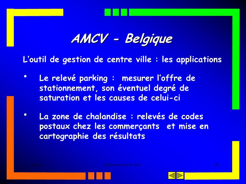 juin 2005Séminaire Centre Ville- 30 - AMCV - Belgique Loutil de gestion de centre ville : les applications Le relevé parking : mesurer loffre de stationnement, son éventuel degré de saturation et les causes de celui-ci La zone de chalandise : relevés de codes postaux chez les commerçants et mise en cartographie des résultats
