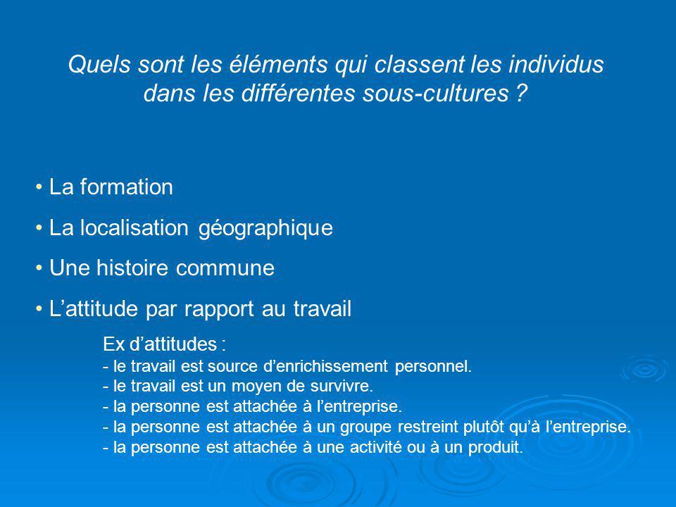 Quels sont les éléments qui classent les individus dans les différentes sous-cultures ? La formation La localisation géographique Une histoire commune