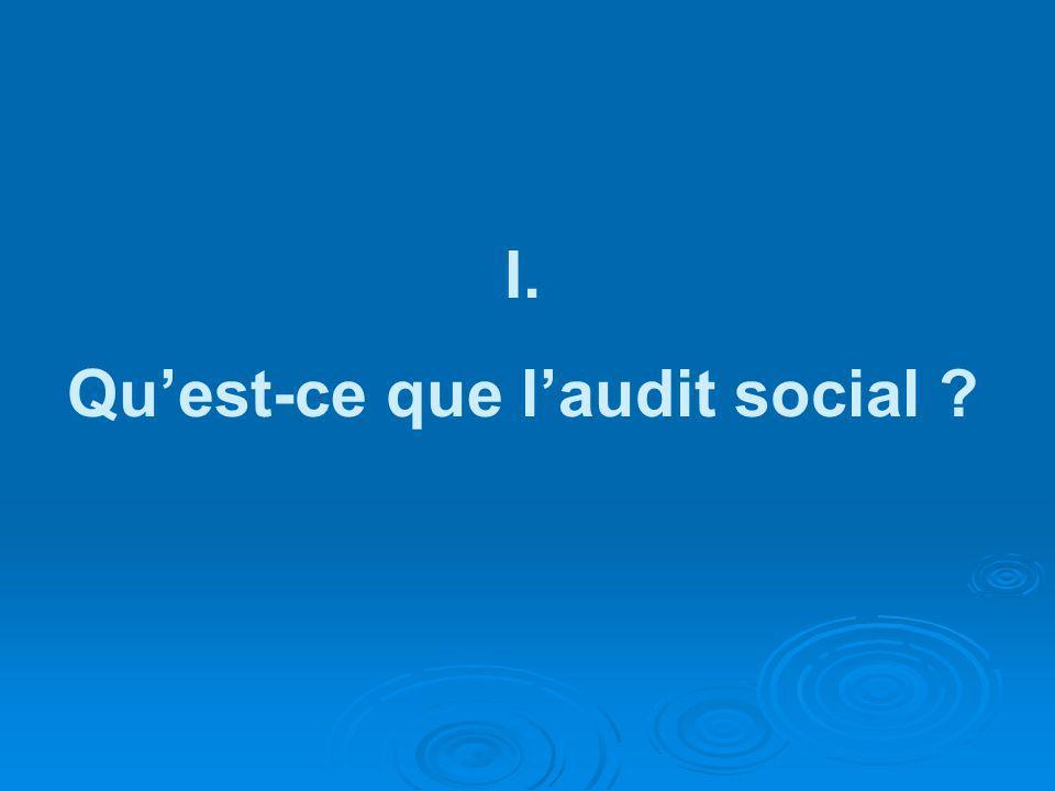 I. Quest-ce que laudit social ?