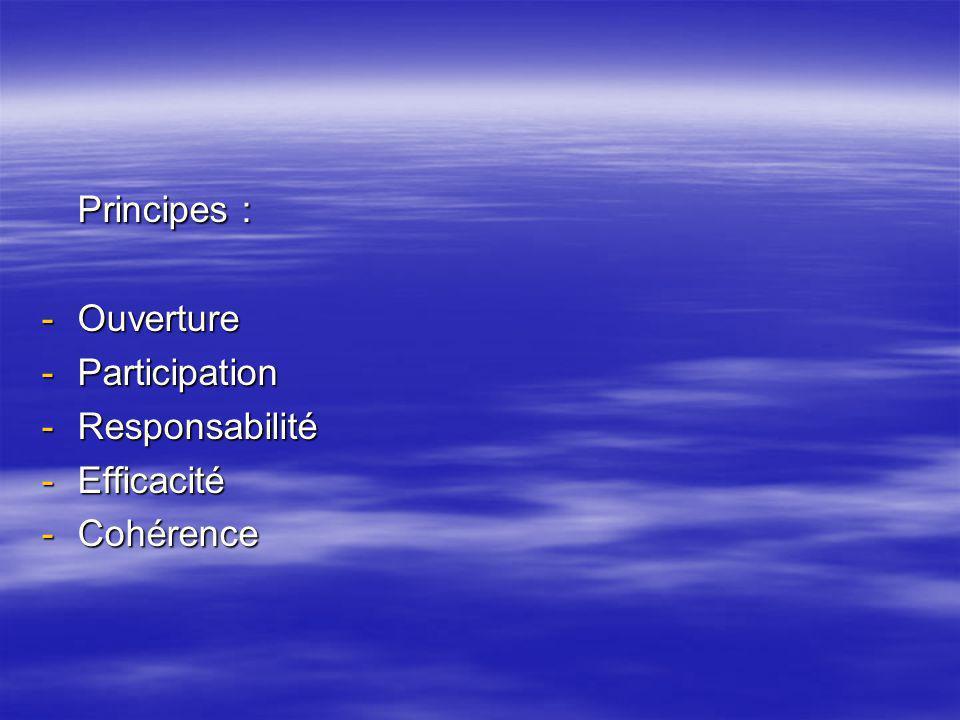 Principes : -Ouverture -Participation -Responsabilité -Efficacité -Cohérence