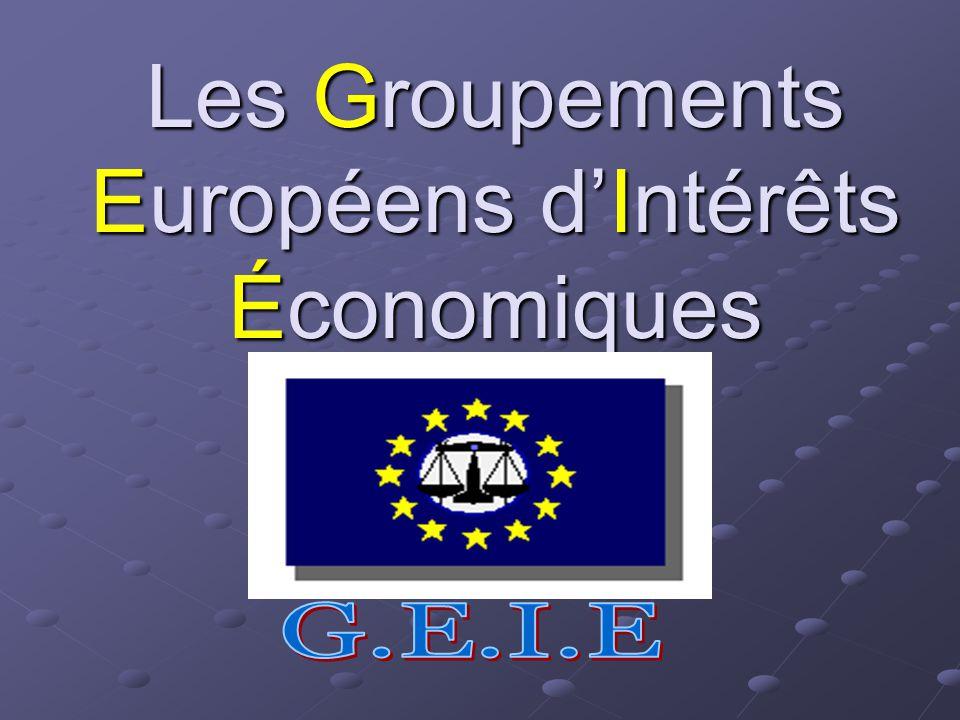 Ne peuvent être membres d un GEIE: Certaines professions exclues par les législations nationales comme par exemple en France, les notaires; Un GEIE ne peut être membre d un autre GEIE.