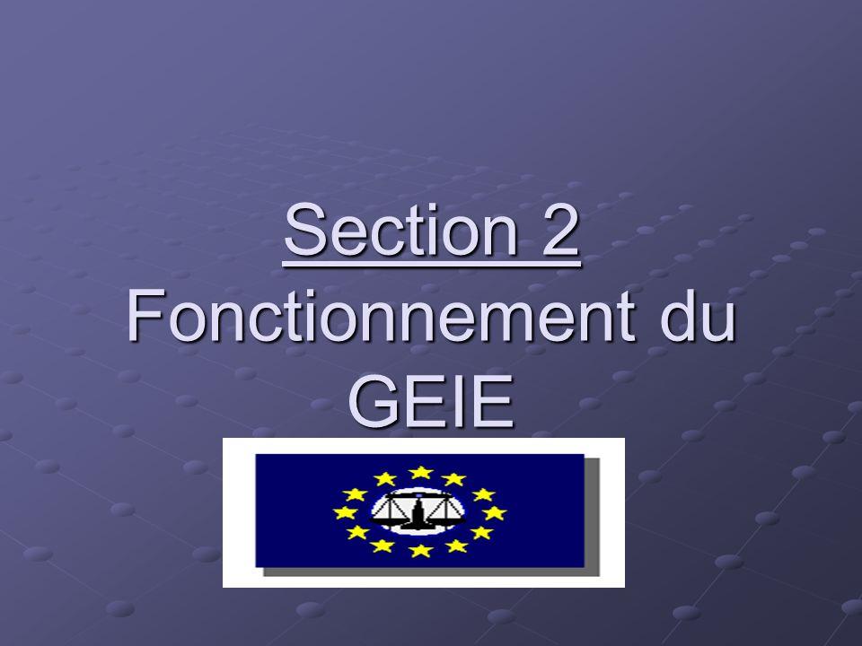 EXEMPLES DE G.E.I.E GEIE créés exclusivement par des PME : - Secteur artisanal - Commerce et distribution - Secteur de la construction - Transport - Industrie manufacturière - Consultation - Services financiers - R&D - Agriculture
