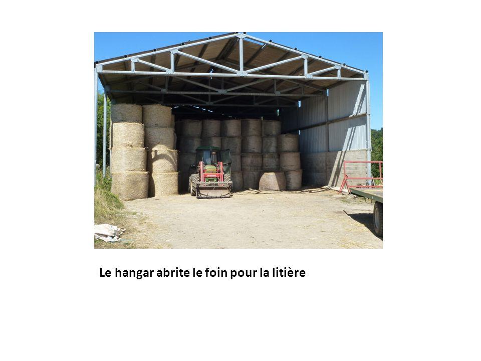 Le hangar abrite le foin pour la litière