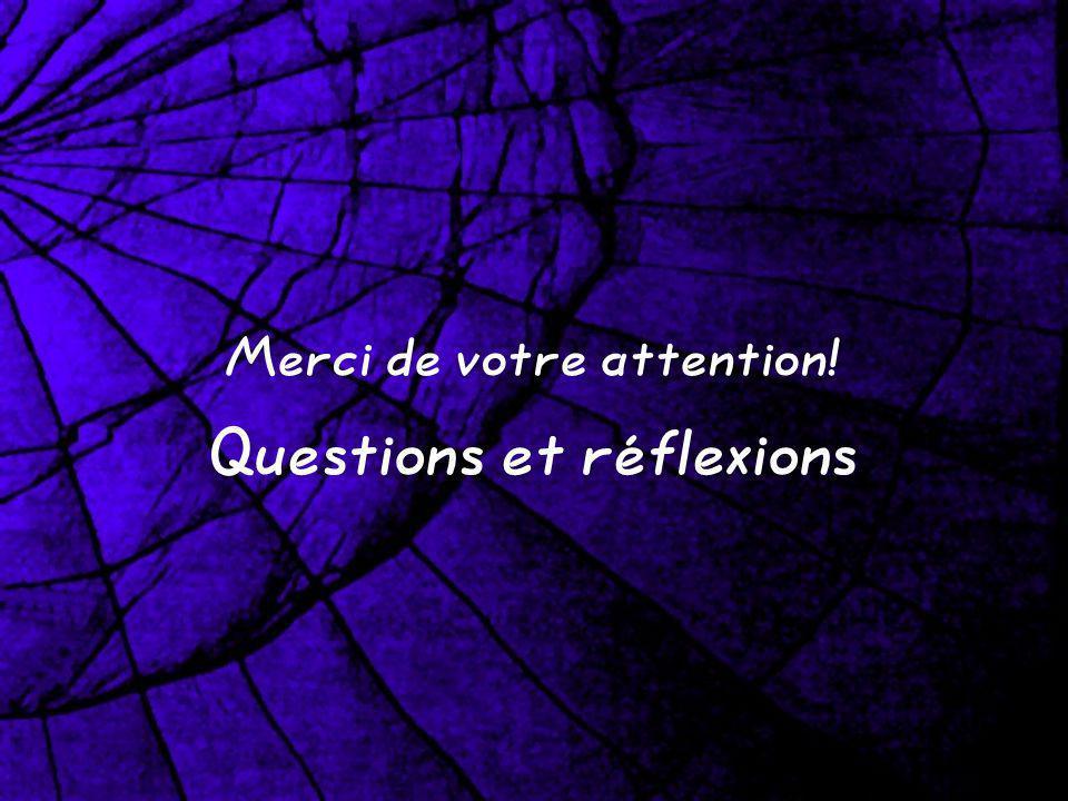 Merci de votre attention! Questions et réflexions