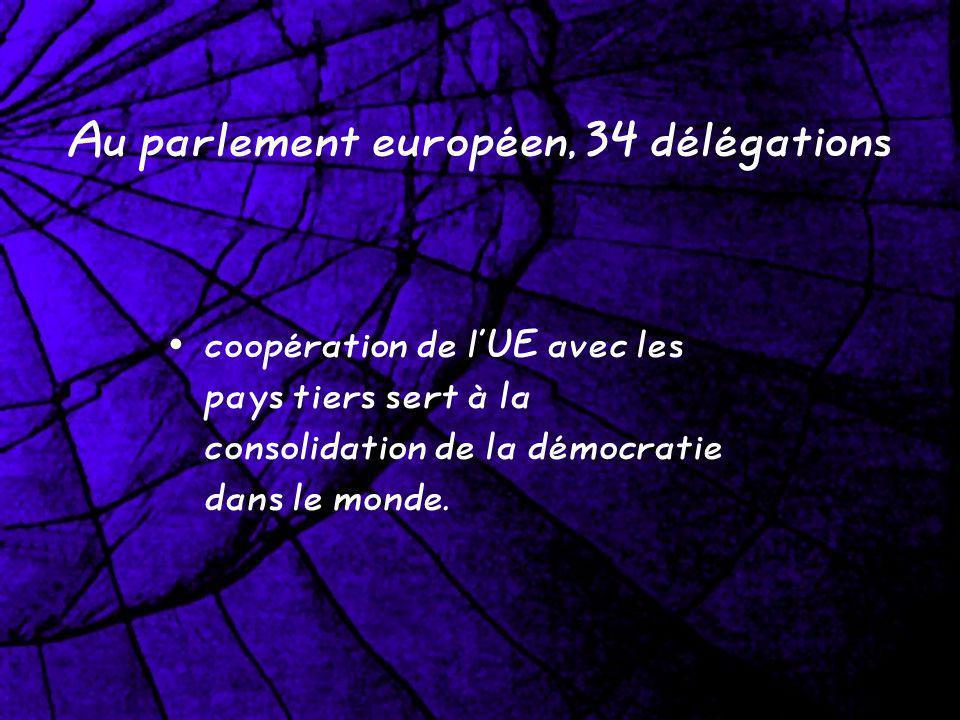 Au parlement européen, 34 délégations coopération de lUE avec les pays tiers sert à la consolidation de la démocratie dans le monde.