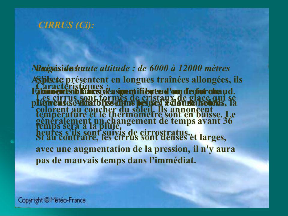 Nuage à développement vertical : de 200 à 8000 mètres Aspect : Ces nuages ont la forme de choux-fleurs, aux contours bien délimités.