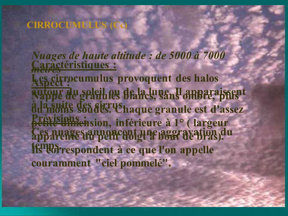 Nuages de basse altitude : de 0 à 2000 mètres Aspect : Gris blanchâtre, avec des parties sombres; composés de dalles ou de rouleaux, soudés ou non.