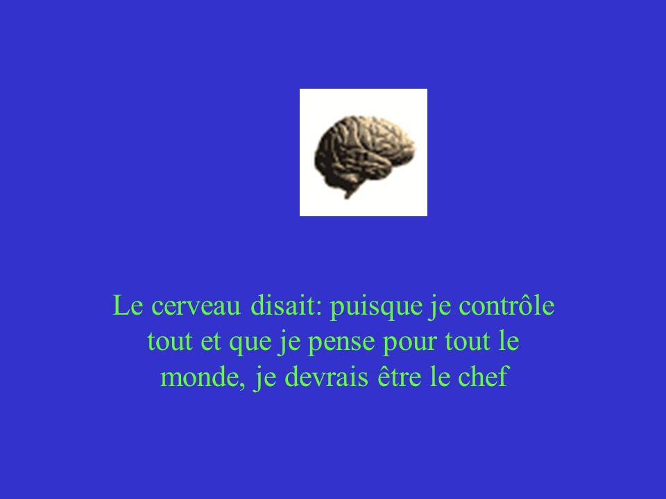 Le cerveau disait: puisque je contrôle tout et que je pense pour tout le monde, je devrais être le chef