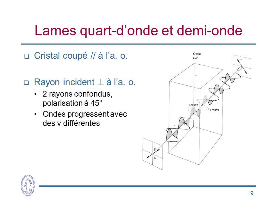 19 Lames quart-donde et demi-onde Cristal coupé // à la. o. Rayon incident à la. o. 2 rayons confondus, polarisation à 45° Ondes progressent avec des