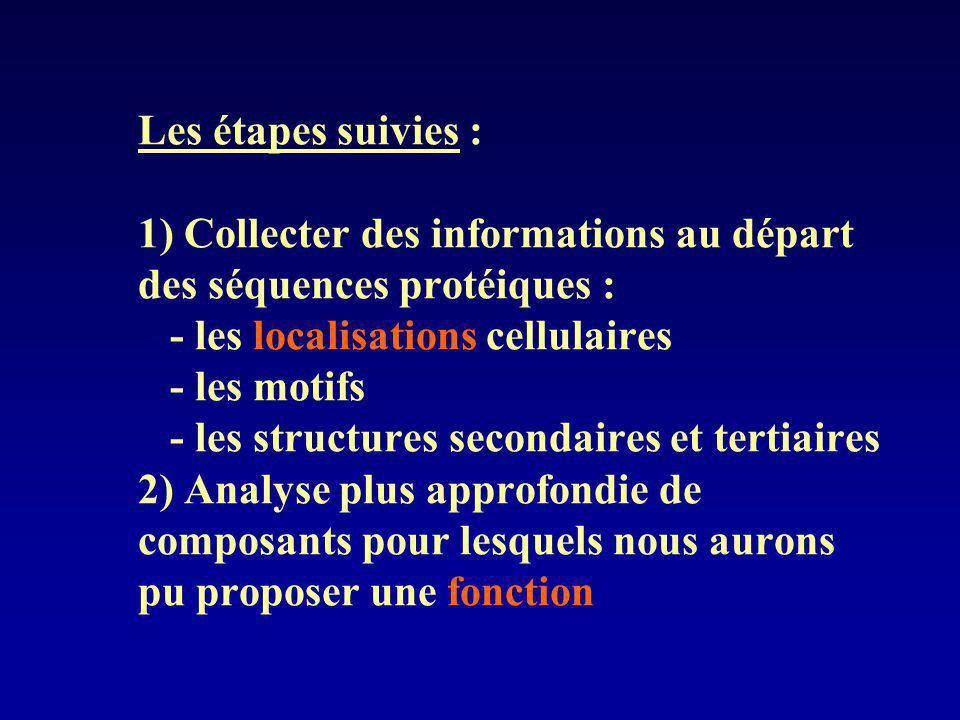 Les étapes suivies : 1) Collecter des informations au départ des séquences protéiques : - les localisations cellulaires - les motifs - les structures