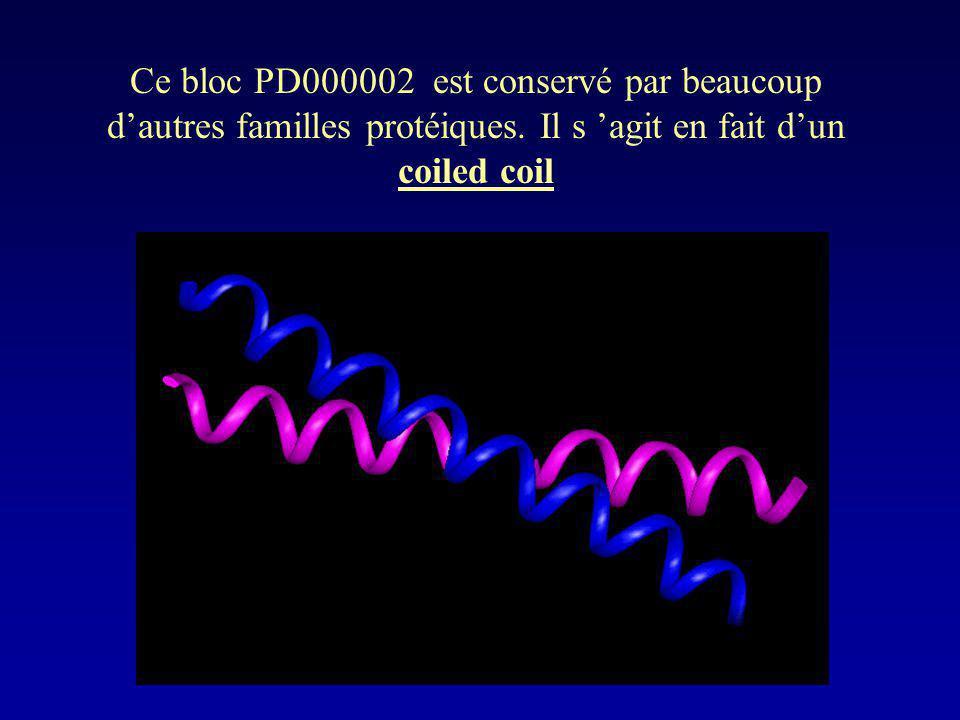 Ce bloc PD000002 est conservé par beaucoup dautres familles protéiques. Il s agit en fait dun coiled coil
