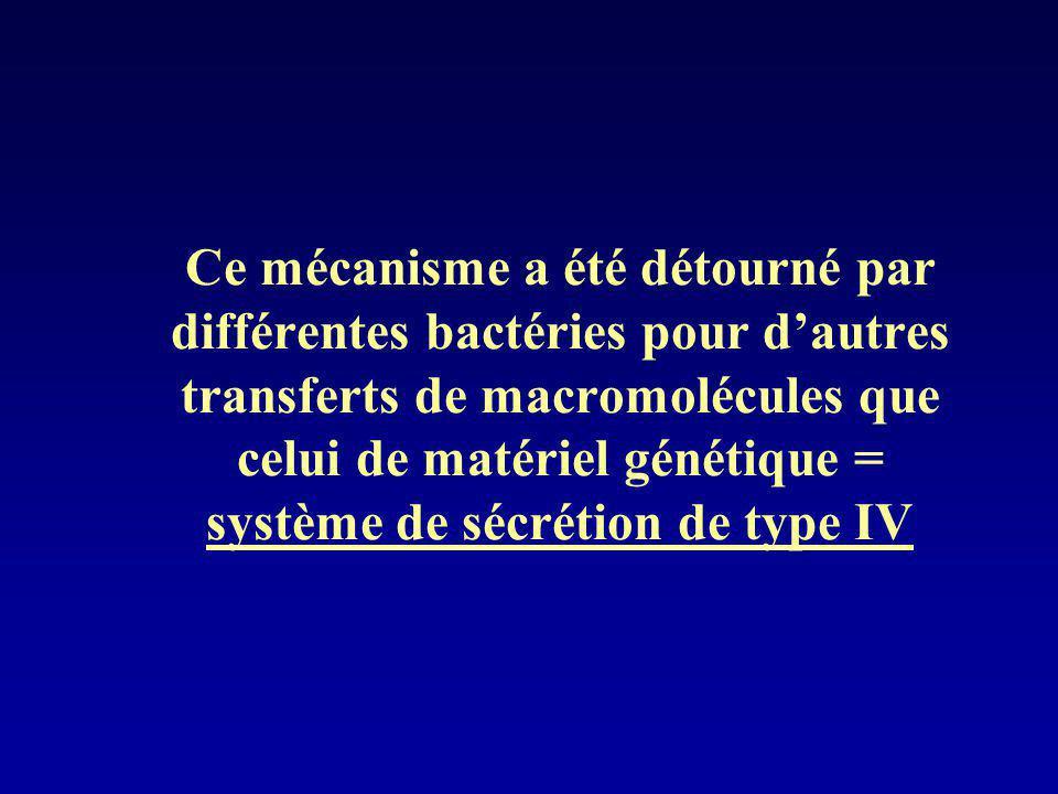 Ce mécanisme a été détourné par différentes bactéries pour dautres transferts de macromolécules que celui de matériel génétique = système de sécrétion