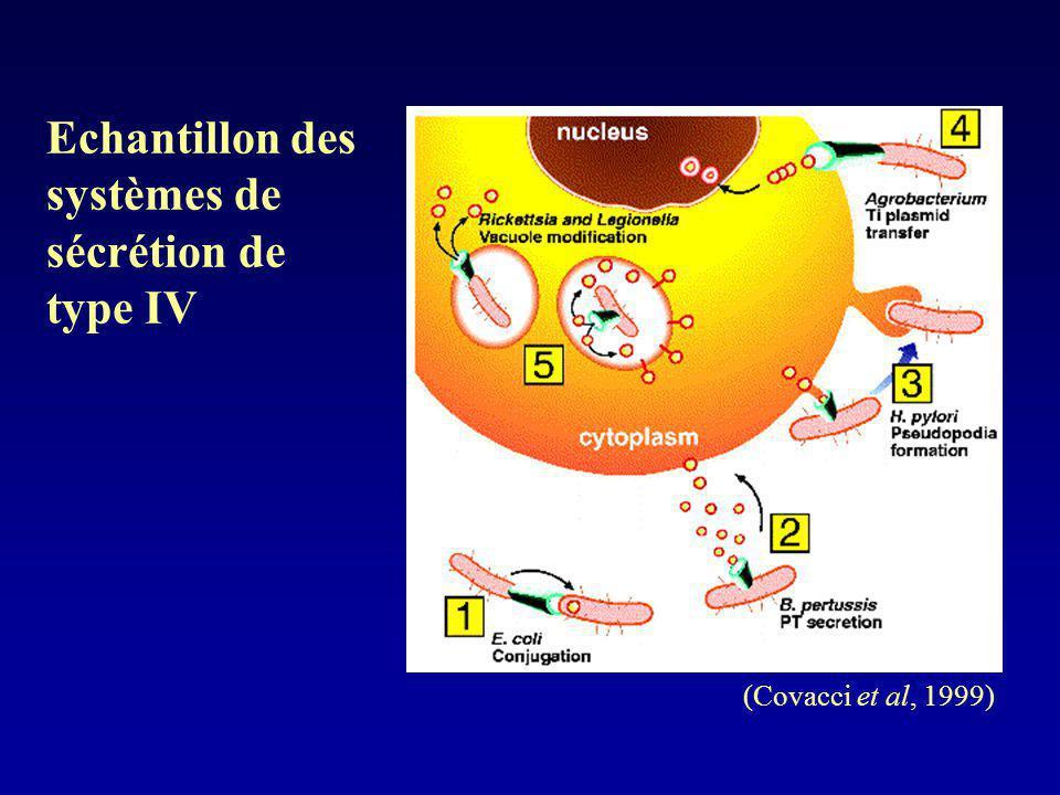 Echantillon des systèmes de sécrétion de type IV (Covacci et al, 1999)
