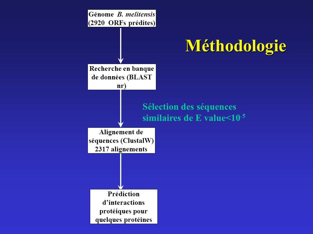 Génome B. melitensis (2920 ORFs)prédites) Alignement de séquences (ClustalW) 2317 alignements Recherche en banque de données (BLAST nr) Sélection des