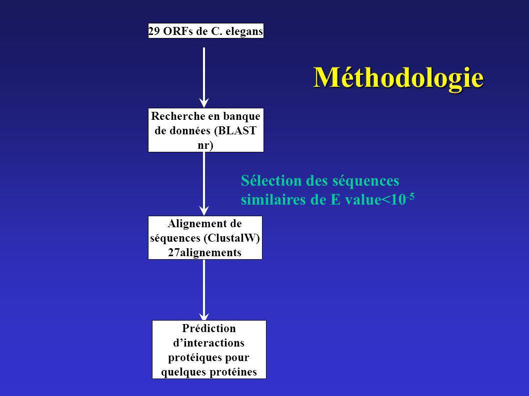 29 ORFs de C. elegans Alignement de séquences (ClustalW) 27alignements Recherche en banque de données (BLAST nr) Sélection des séquences similaires de