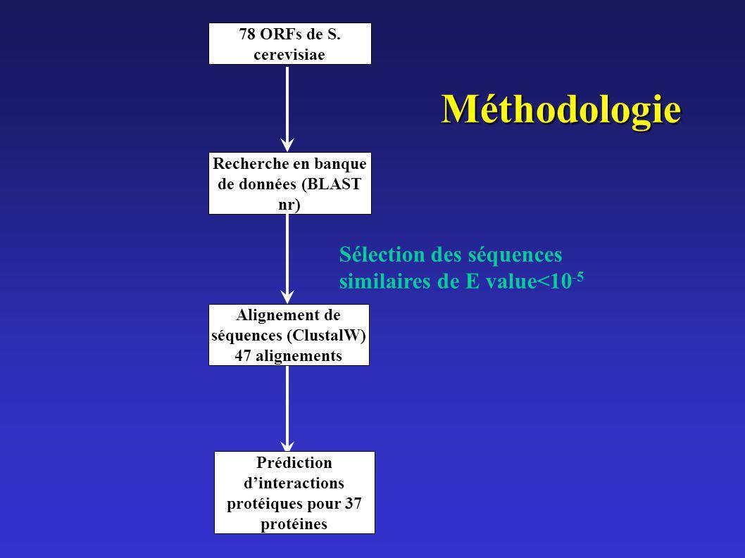 78 ORFs de S. cerevisiae Alignement de séquences (ClustalW) 47 alignements Recherche en banque de données (BLAST nr) Sélection des séquences similaire