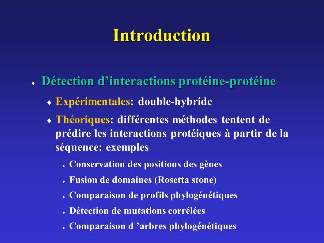 ordre Conservation de l ordre des gènes génome1 génome2 Gènes orthologues Fusion de domaines (Rosetta stone) Profils phylogénétiques org1org2org3org4 Protéine A 0011 Protéine B101 0 Protéine C0011 Profils identiques Génome 1 Génome 2
