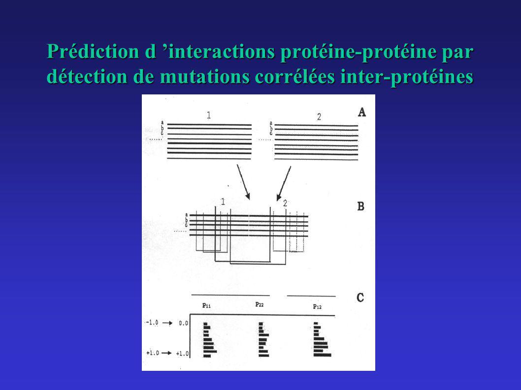 Test sur quelques protéines de S.
