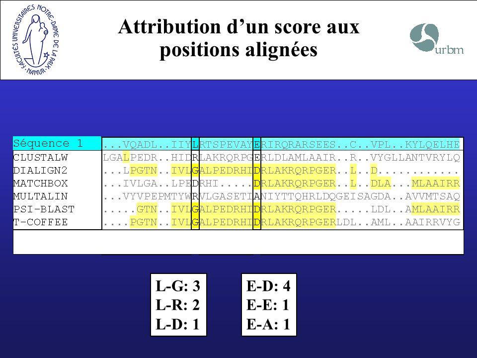 Attribution dun score aux positions alignées Séquence 1 L-G: 3 L-R: 2 L-D: 1 E-D: 4 E-E: 1 E-A: 1