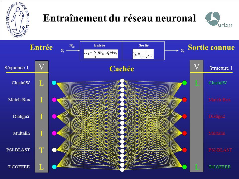 Entraînement du réseau neuronal Entrée Cachée Sortie connue Séquence 1 V Multalin I PSI-BLAST T Dialign2 I ClustalW LL Match-Box I T-COFFEE LL V Struc