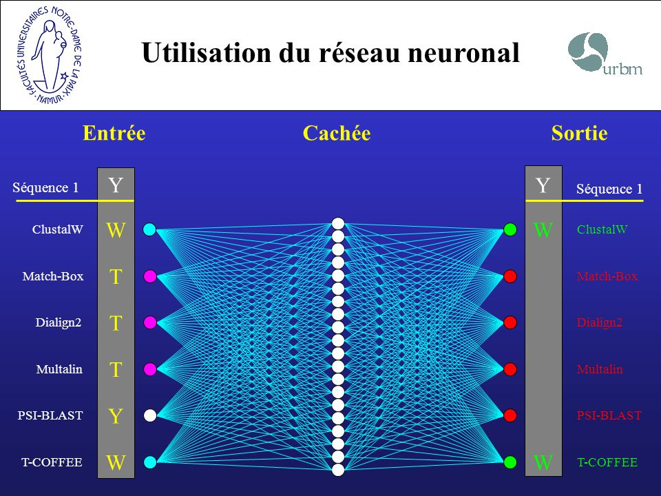 Utilisation du réseau neuronal Entrée Cachée Sortie Séquence 1 Y Multalin T PSI-BLAST Y Dialign2 T ClustalW WW Match-Box T T-COFFEE WW Y Séquence 1