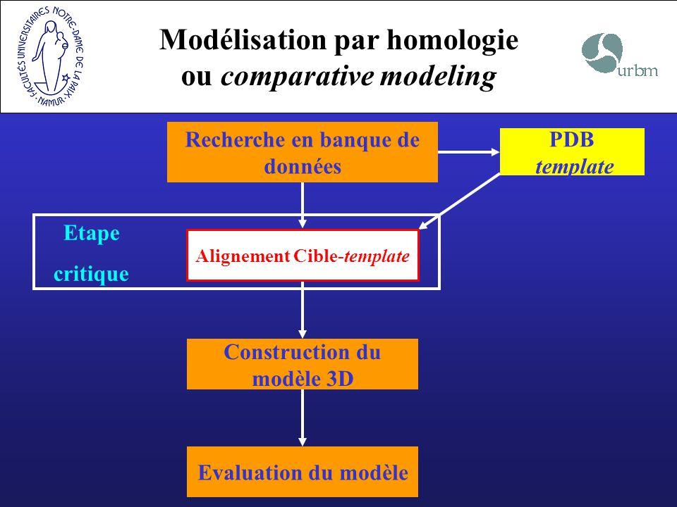 Modélisation par homologie ou comparative modeling Recherche en banque de données PDB template Etape critique Construction du modèle 3D Evaluation du