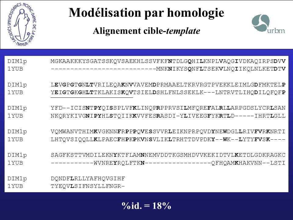 Modélisation par homologie Alignement cible-template DIM1p MGKAAKKKYSGATSSKQVSAEKHLSSVFKFNTDLGQHILKNPLVAQGIVDKAQIRPSDVV 1YUB -------------------------