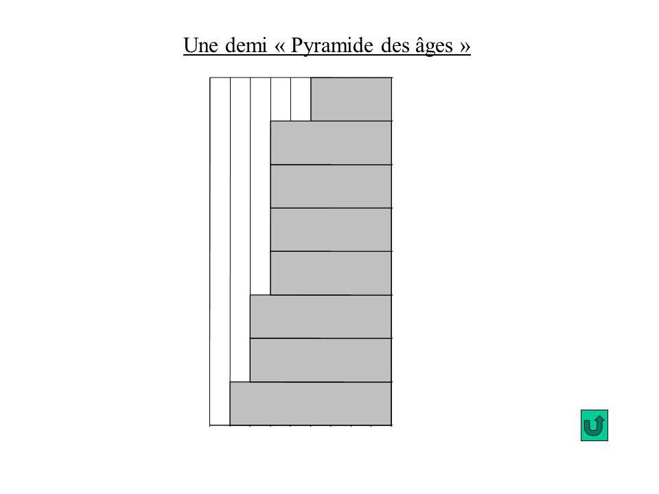0 0 0 Une demi « Pyramide des âges »