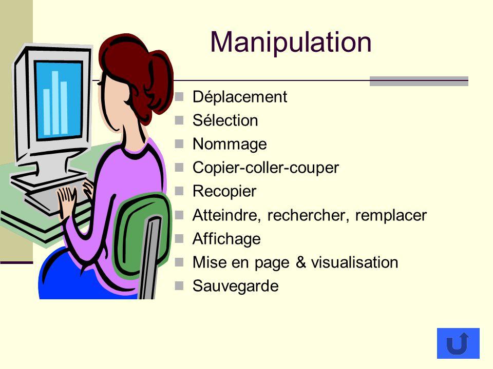 Manipulation Déplacement Sélection Nommage Copier-coller-couper Recopier Atteindre, rechercher, remplacer Affichage Mise en page & visualisation Sauvegarde