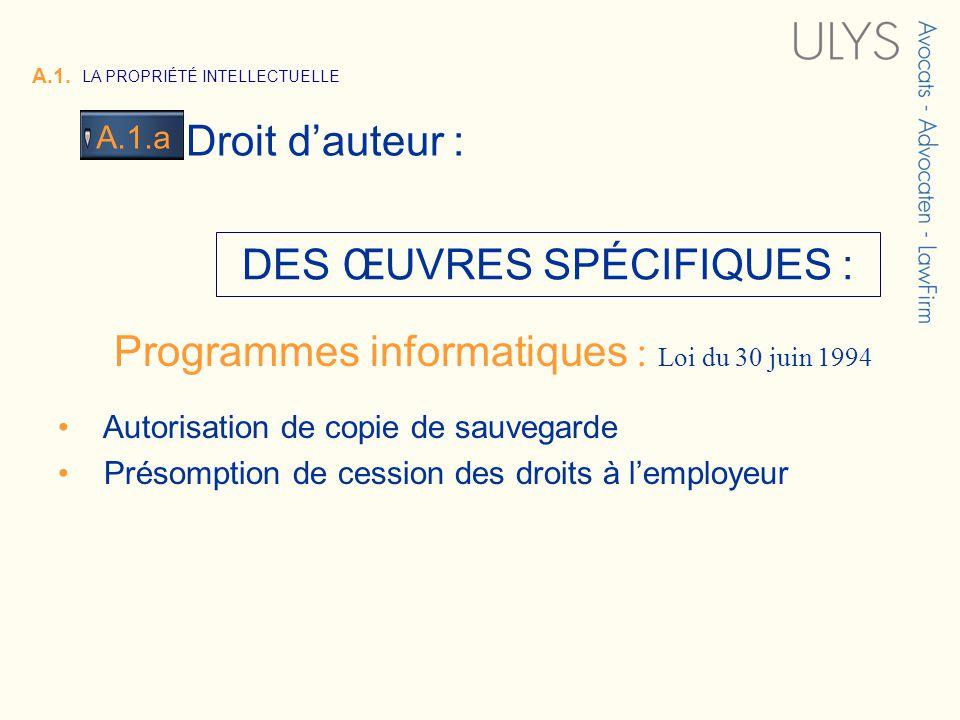 3 TITRE Programmes informatiques : Loi du 30 juin 1994 DES ŒUVRES SPÉCIFIQUES : Autorisation de copie de sauvegarde Présomption de cession des droits à lemployeur A.1.