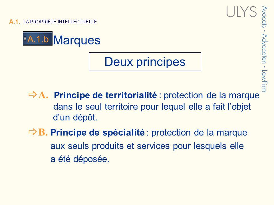 3 TITRE A. Principe de territorialité : protection de la marque dans le seul territoire pour lequel elle a fait lobjet dun dépôt. B. Principe de spéci