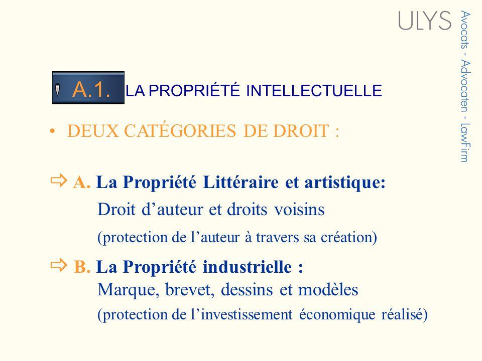 3 TITRE LA PROPRIÉTÉ INTELLECTUELLE A.1. DEUX CATÉGORIES DE DROIT : A. La Propriété Littéraire et artistique: Droit dauteur et droits voisins (protect