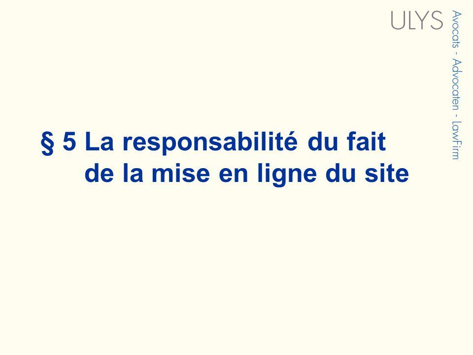 § 5 La responsabilité du fait de la mise en ligne du site