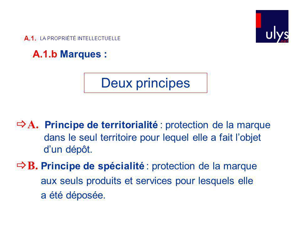 A. Principe de territorialité : protection de la marque dans le seul territoire pour lequel elle a fait lobjet dun dépôt. B. Principe de spécialité :