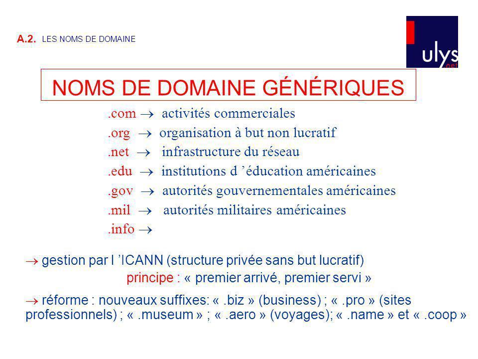 A.2. LES NOMS DE DOMAINE NOMS DE DOMAINE GÉNÉRIQUES.com activités commerciales.org organisation à but non lucratif.net infrastructure du réseau.edu in